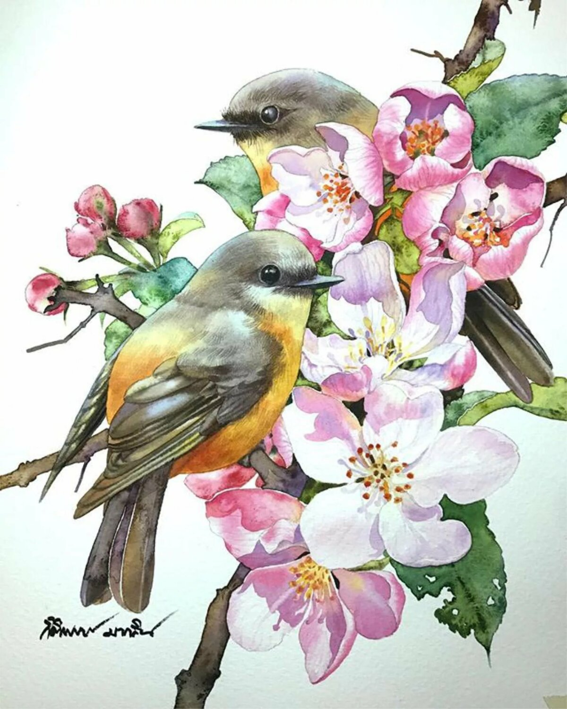 побочный акварель птицы цветы картинки самые популярные достопримечательности