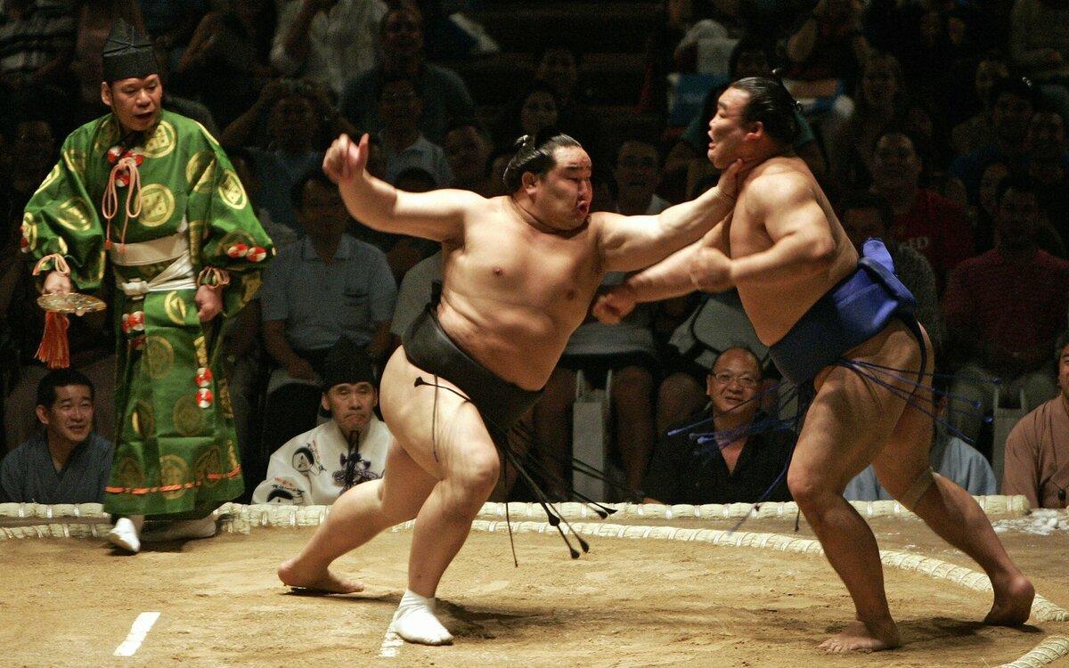 картинки сумо каратэ крупные