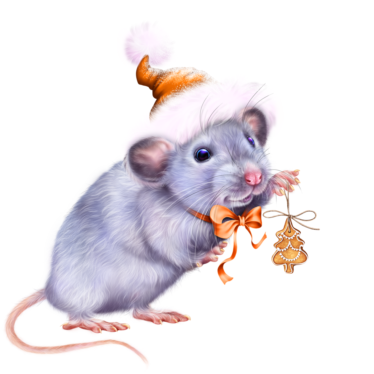 мышка2пнг (637x700, 54Kb)