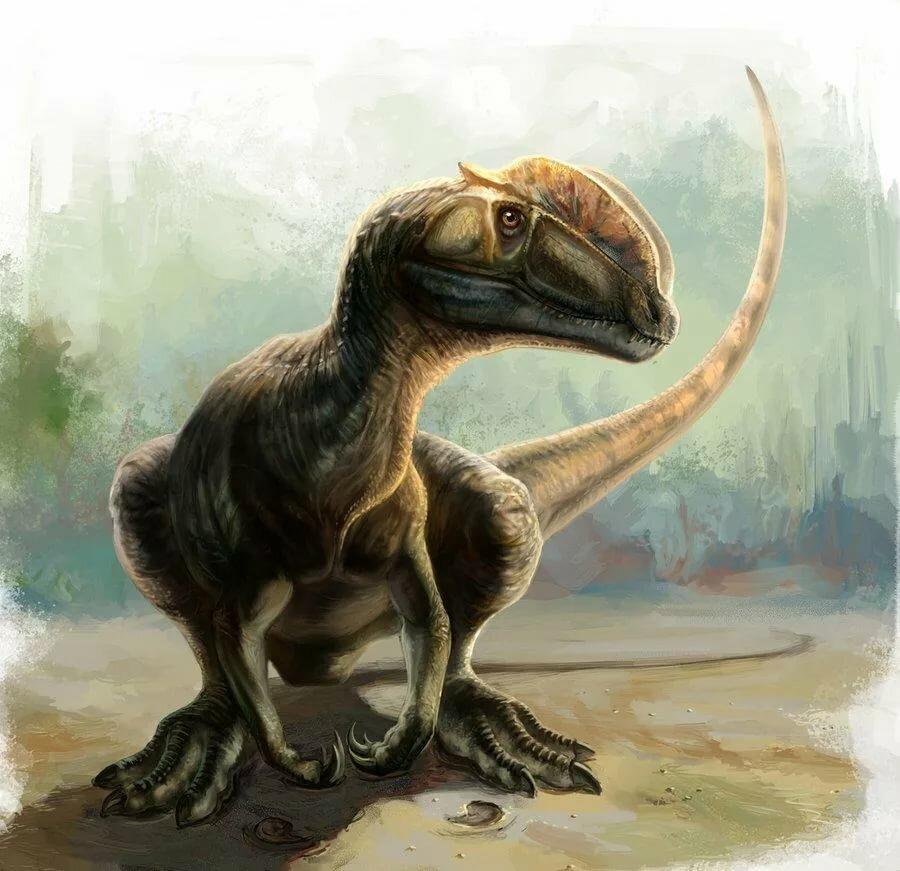 станции дилофозавр картинки в юрском периоде ясное дело
