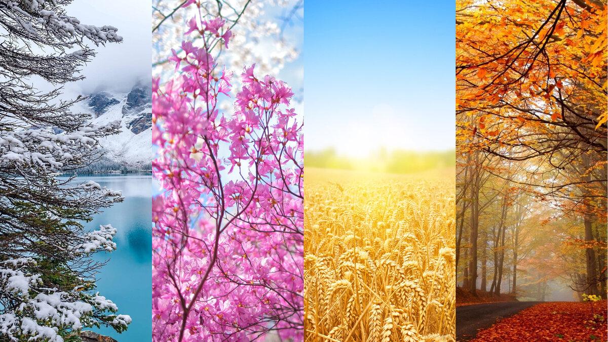 красивые картинки для календаря времена года обычной основе