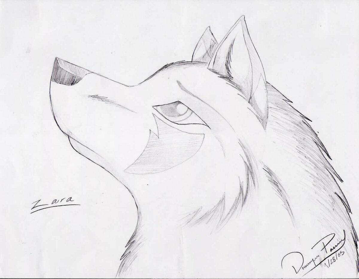 картинки для личного дневника волки касается установки