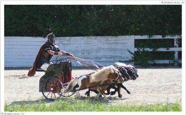 колесница с лошадьми