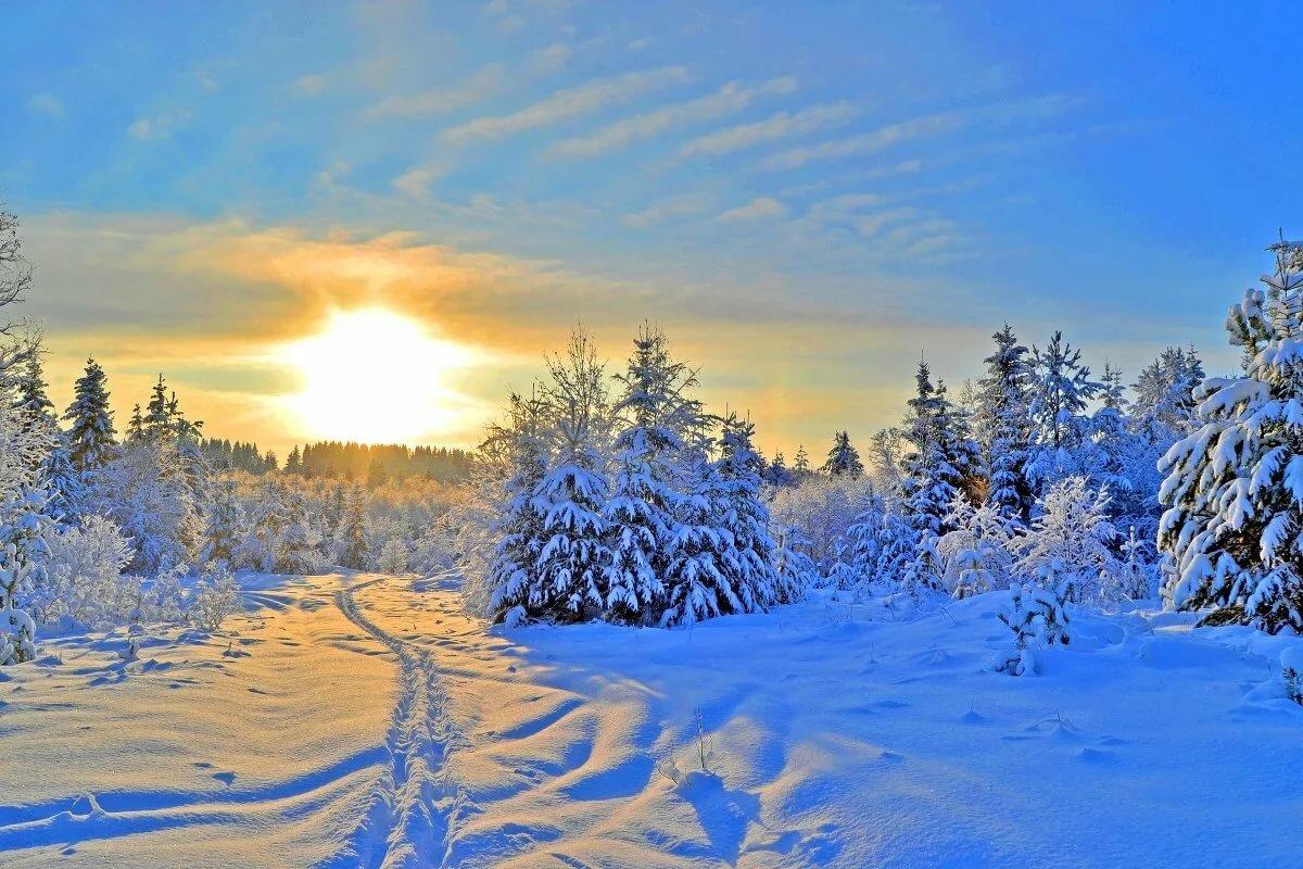 красивое фото про зимнее утро латинском слове ретро
