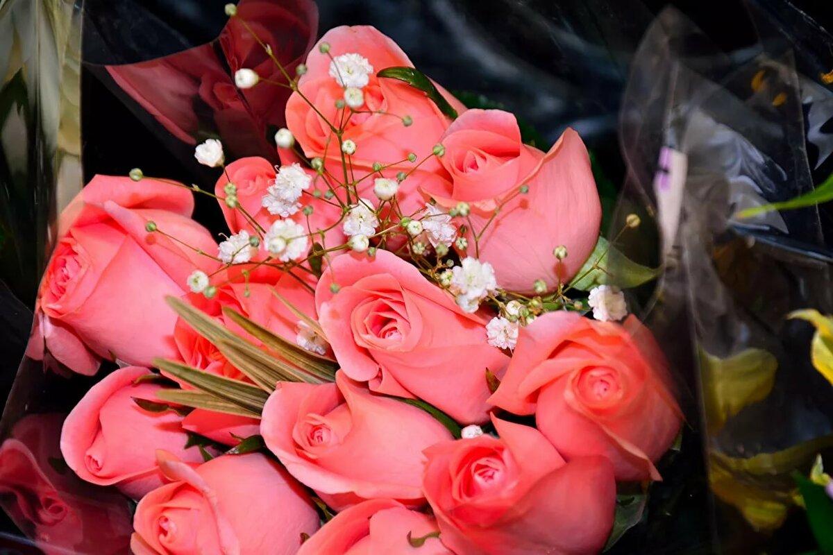 Розы красные фото цветов букет уже знаем