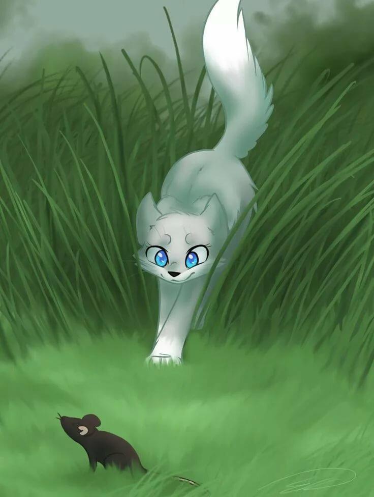Картинки белолапки из котов воителей
