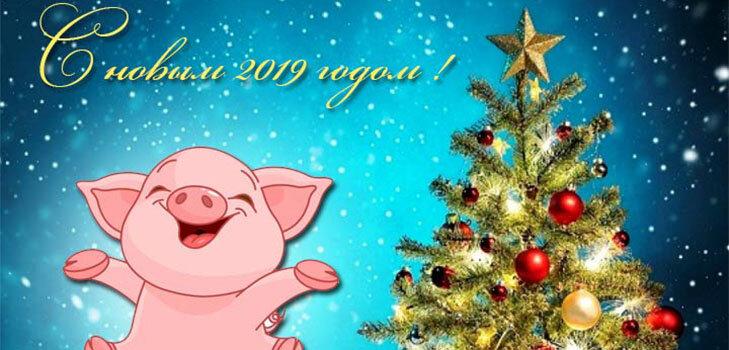 Поздравления картинки с новым годом 2019 год свиньи прикольные, пожеланием дню рождения