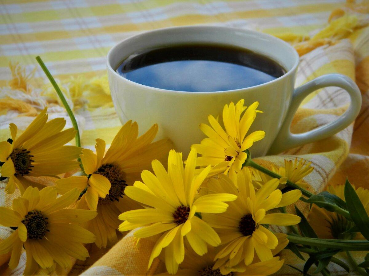 Открытки с добрым утром позитива на весь день