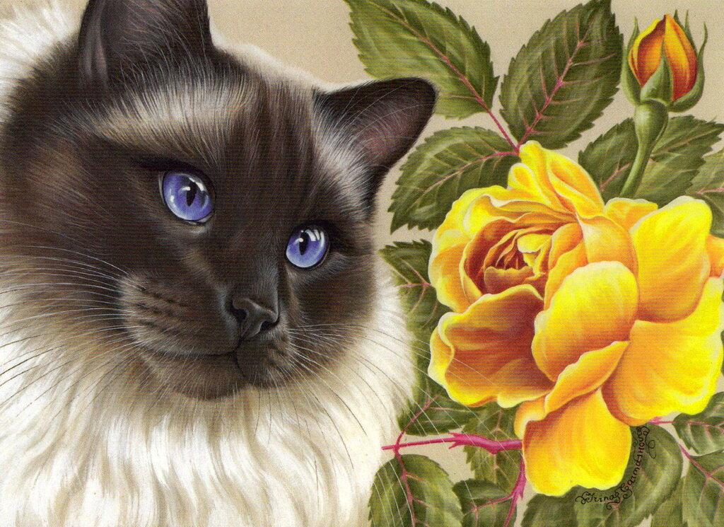 открытки с котами гармашовой время года заставляет