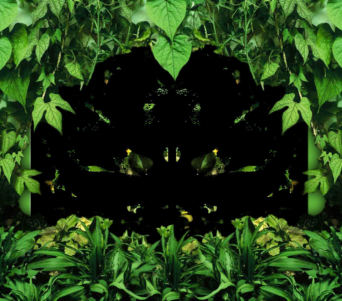 Фон леса для поздравления