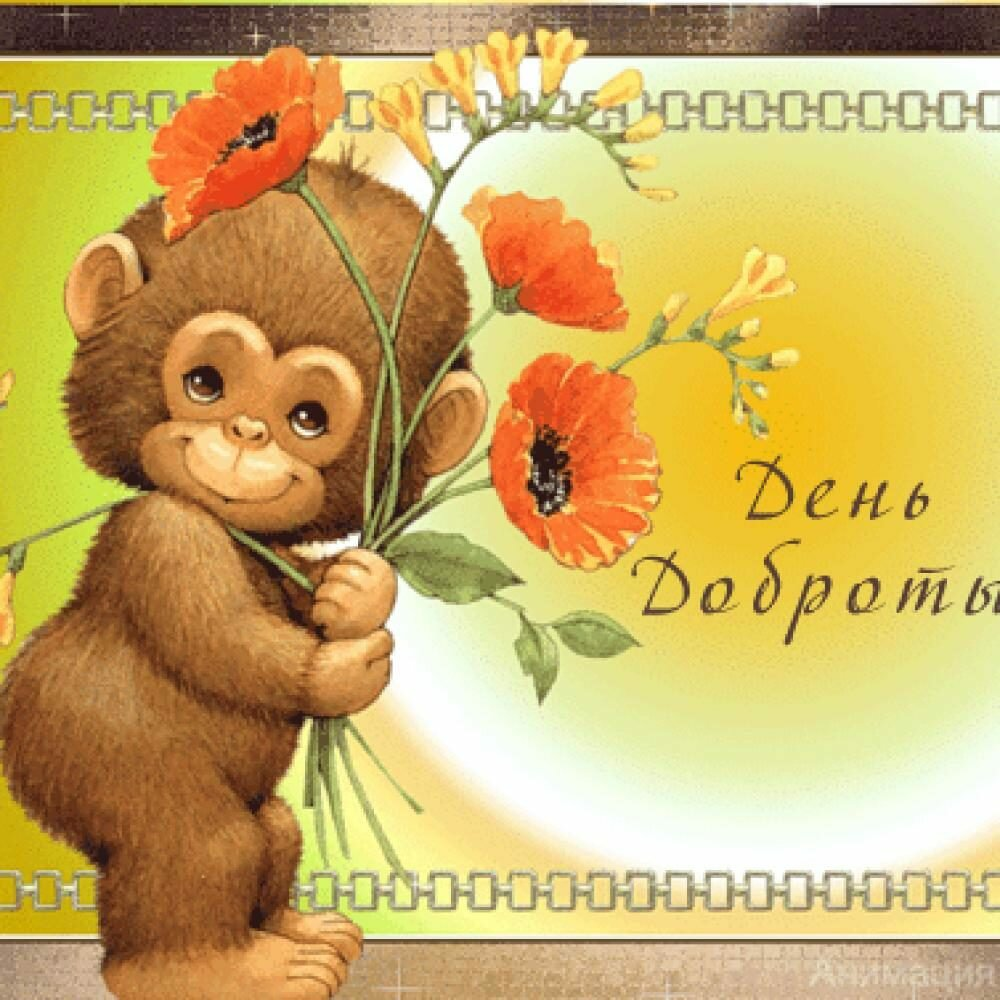 хищная красивые открытки с обезьянами квартира это всегда