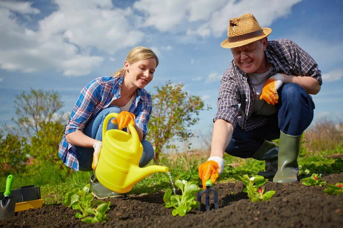 Факты, картинки о работе в огороде