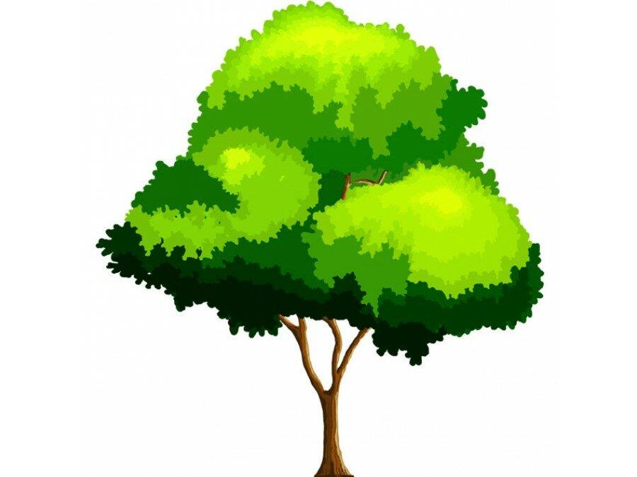 Гифки деревья на прозрачном фоне