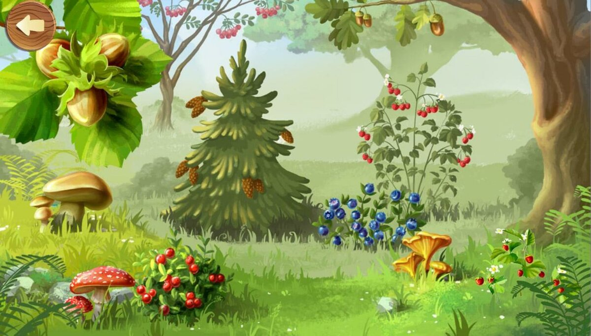 Картинки на лесной поляне для детей