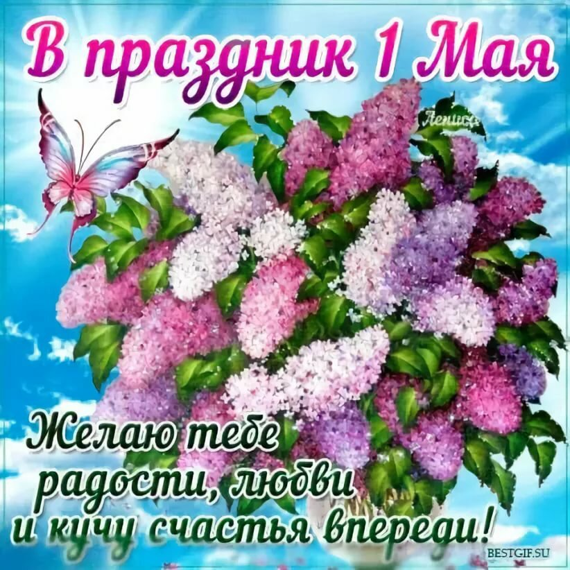 https://avatars.mds.yandex.net/get-pdb/1707672/60ec68e8-23cf-4433-ad13-ed3d4a40cbcd/s1200