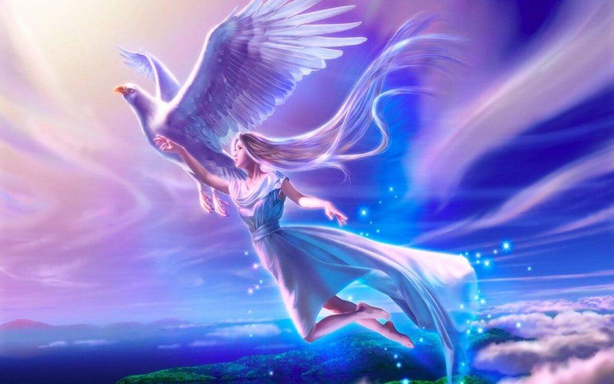 Картинки вот, открытка на крыльях счастья