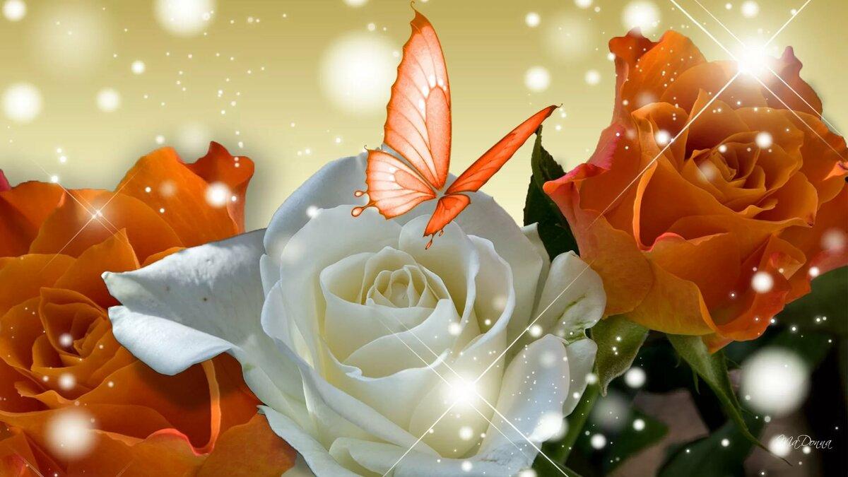 Картинки на рабочий стол анимация розы