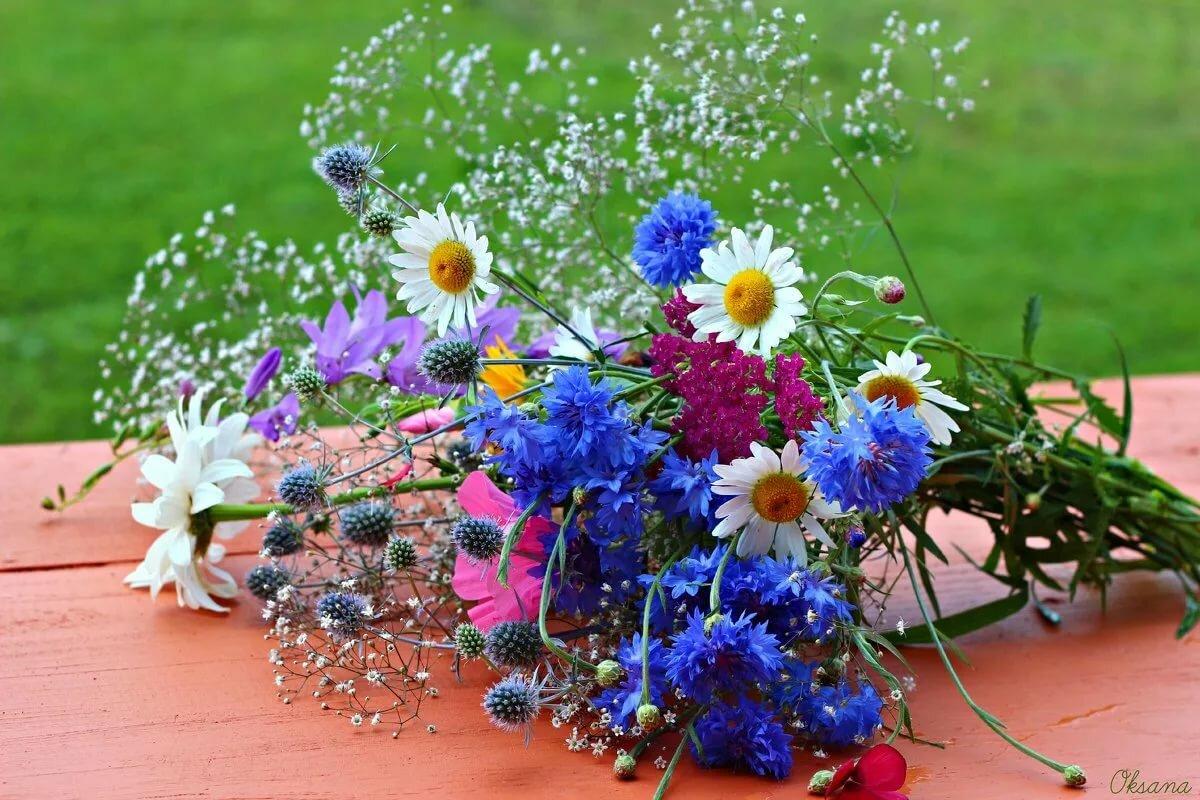Красивые картинки букетов полевых цветов для любимой