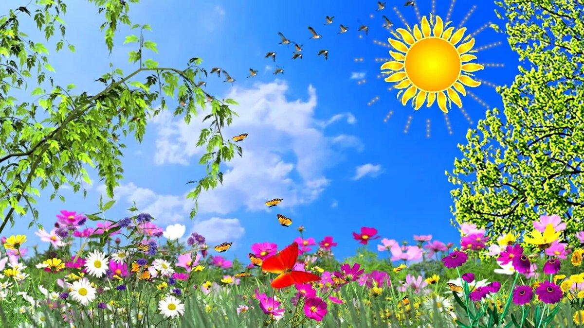 беседка картинки с солнышком и цветами в цветном рисунке вышла