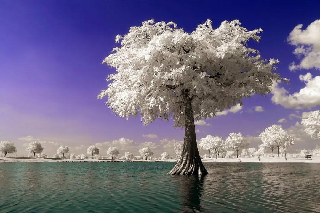 Необыкновенные красивые картинки фото
