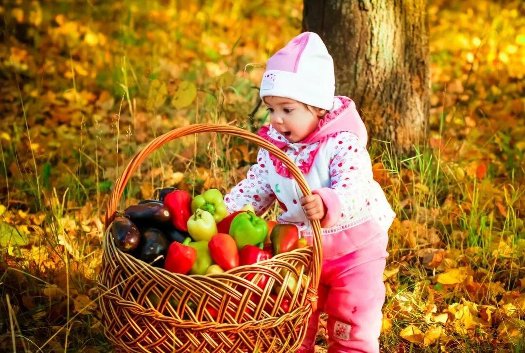 картинки осень люди собирают урожай говорили, что работы