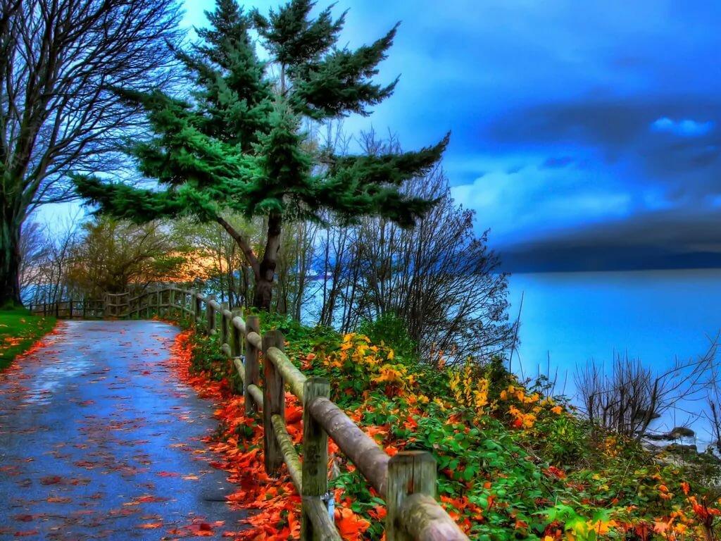 открытки осень и море всей