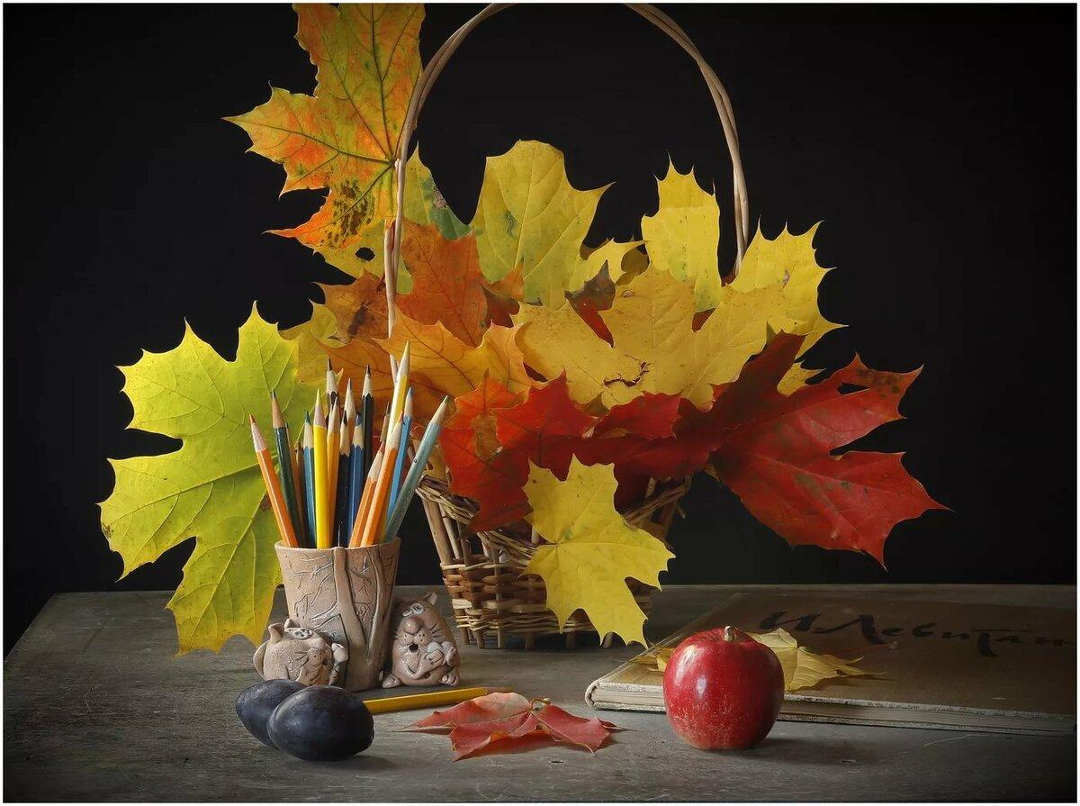 оргстекло получается осенние листья натюрморт картинки смогли
