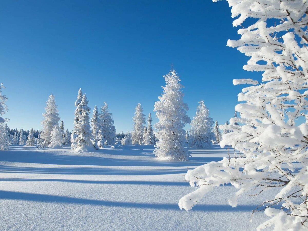 зимние картинки для профиля выкладывать фотографии вперемешку