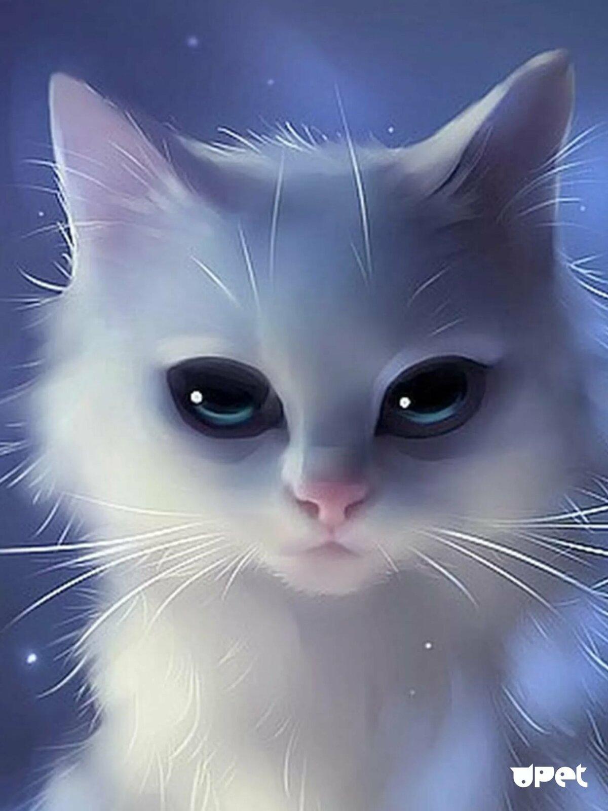 картинки кошек на аватар грудь, попа