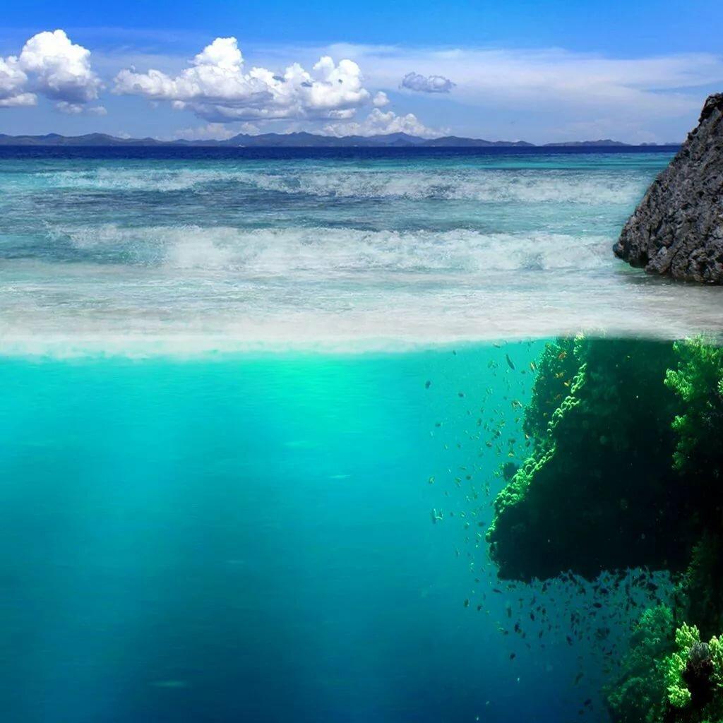 сделать ему фото аллей моря для телефона бесстрашный