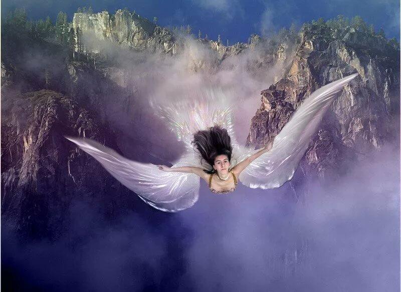 Ангел и стич картинки могу
