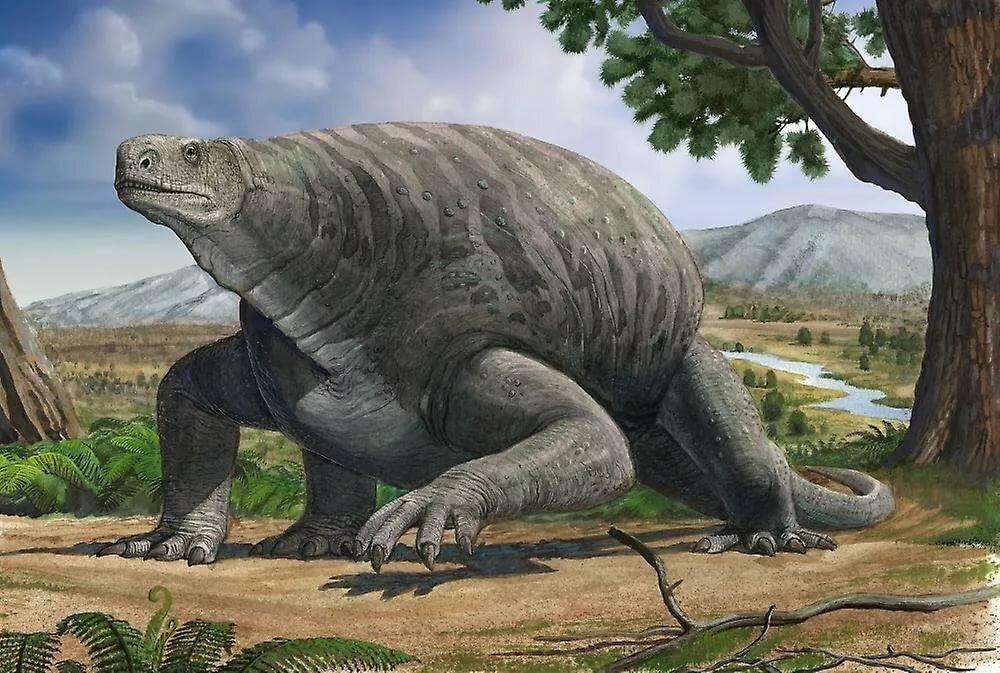 фото доисторические животные смотреть картинки сия публика