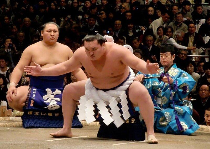 дерутся картинки сумо каратэ трое