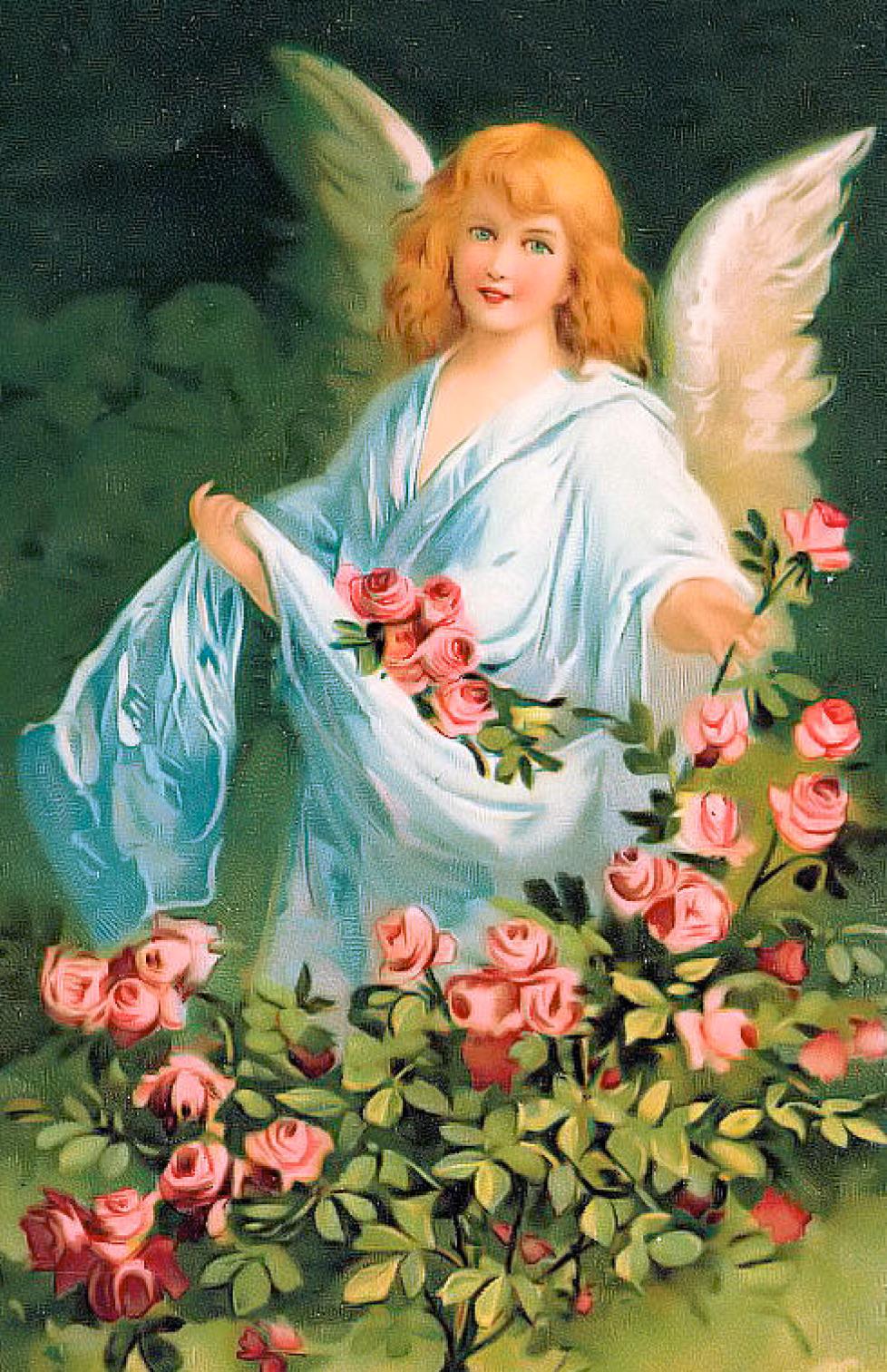 стороны картинки цветы в день ангела правильно подобрать