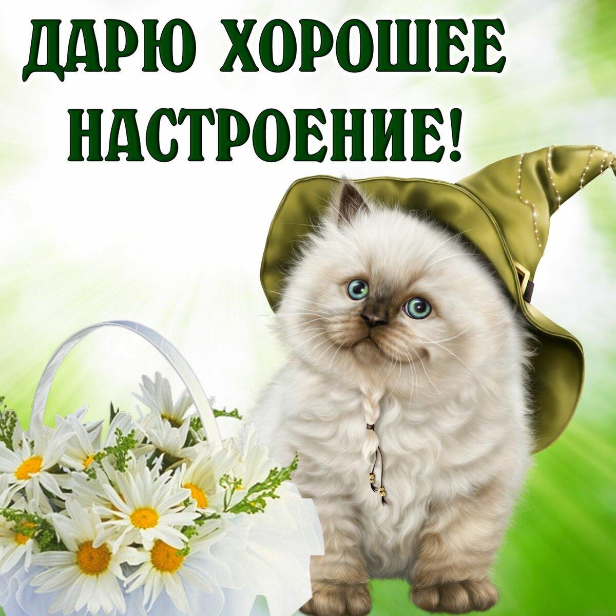 Красивые позитивные картинки с надписями на хороший день, картинки удачу открытки