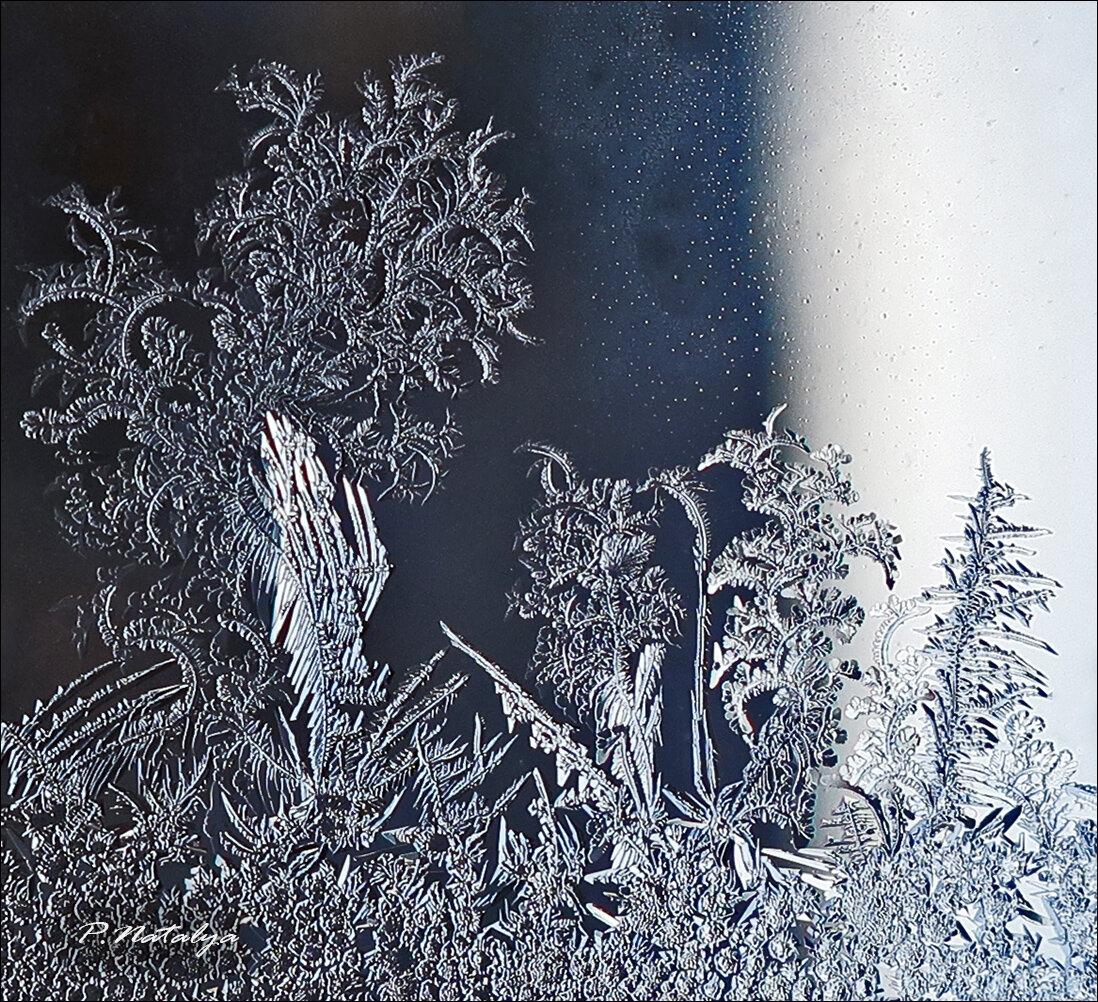 Годик прозе, картинки морозные узоры нитками