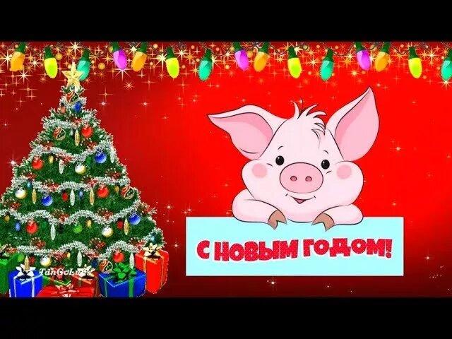 Прикольное видео поздравление с новым годом свиньи