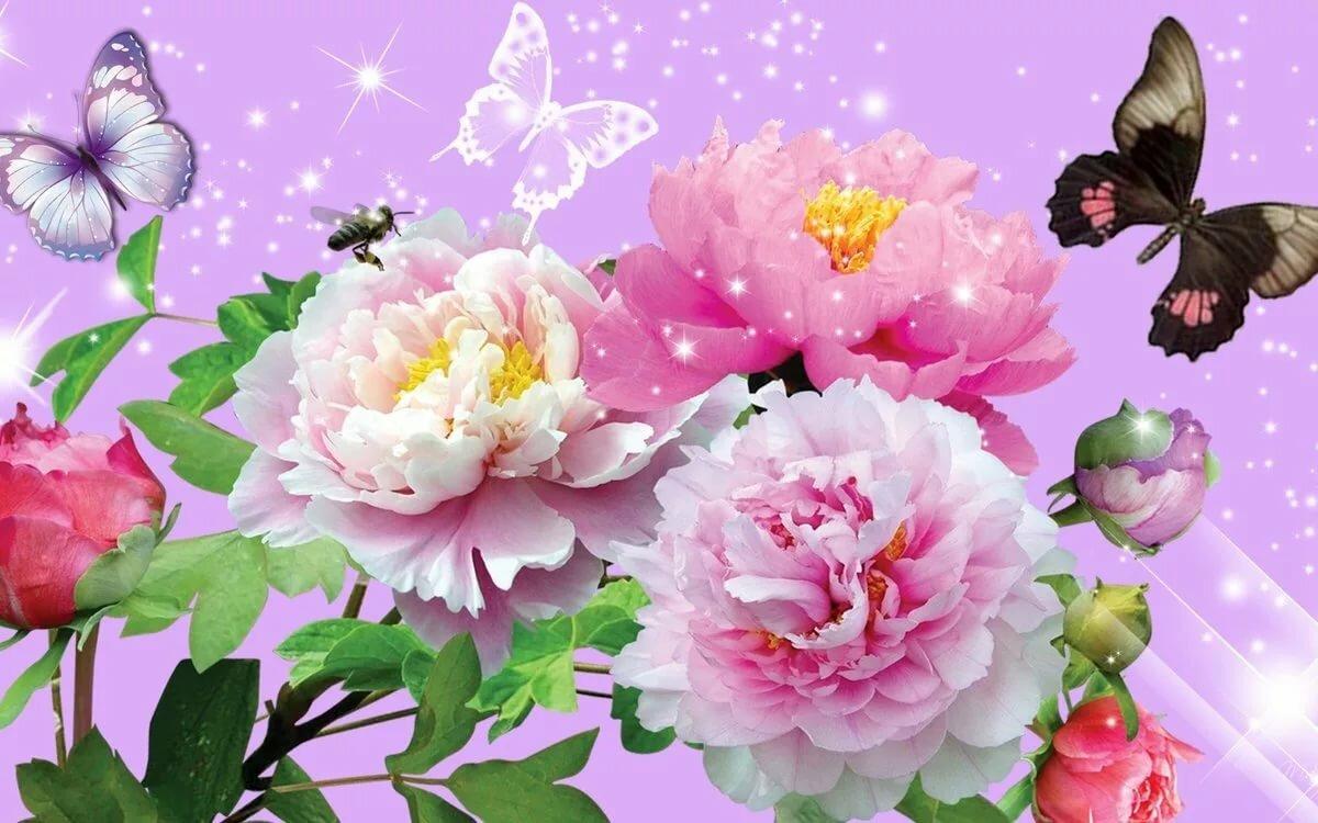 Открытки бабочки и розы