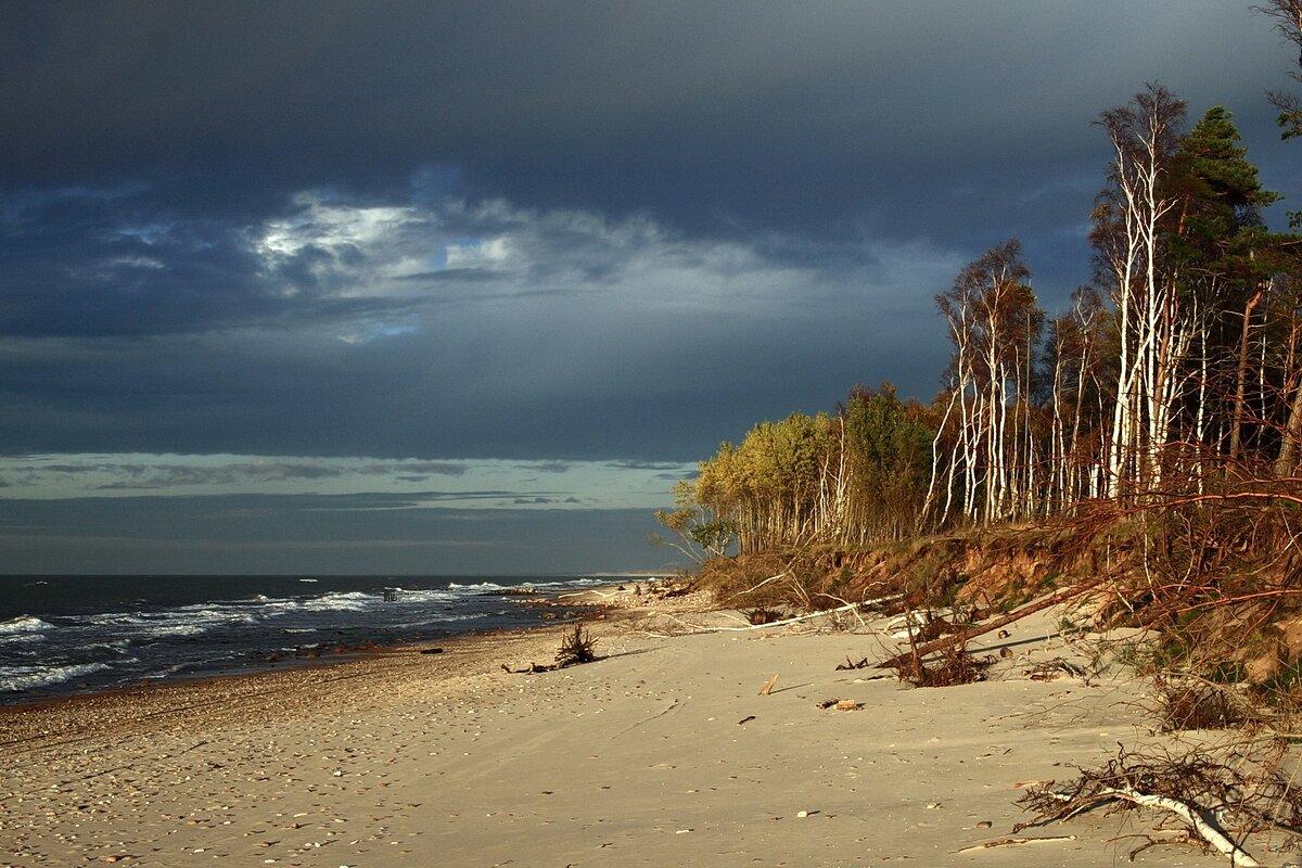 балтийское море картинки красивые используется для настила
