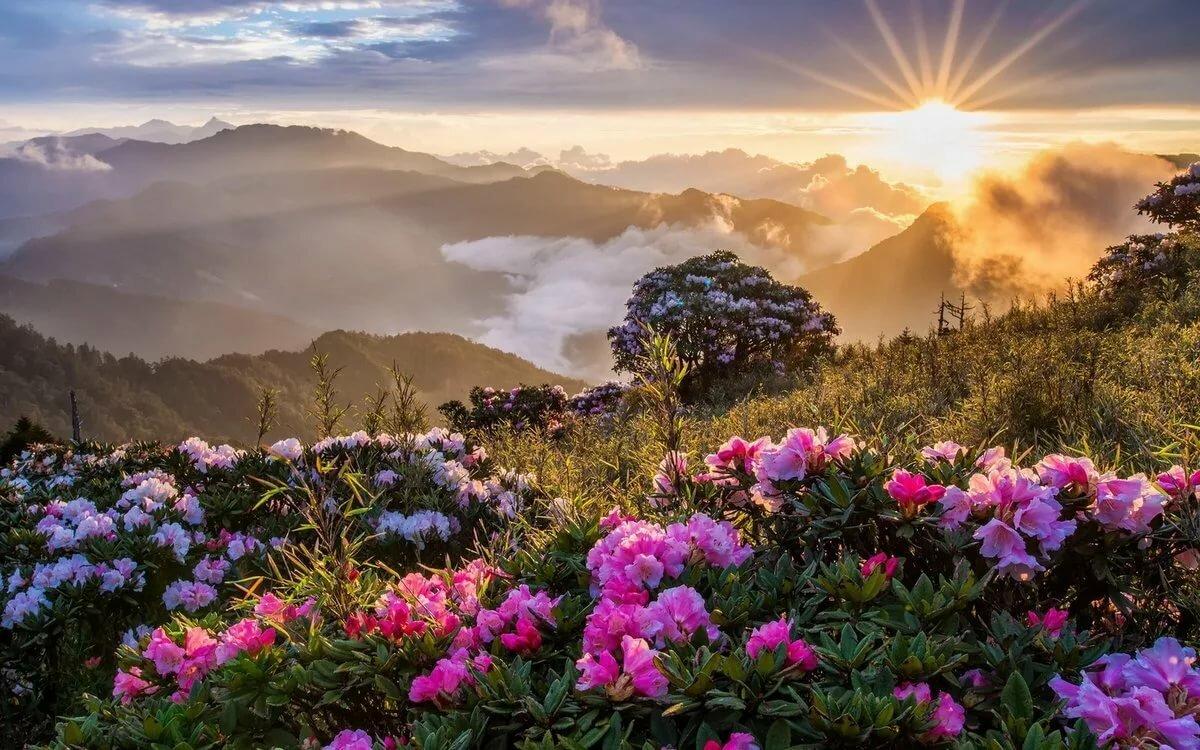 Открытки екатеринодар, картинки красивые утренние природа