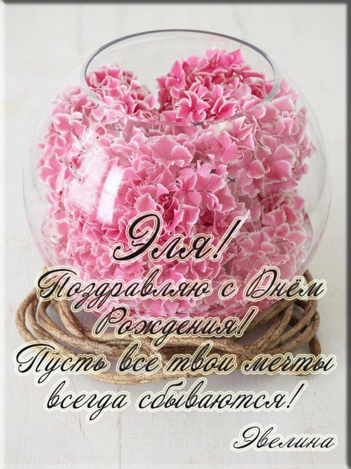 свитлогорье открытки с днем рождения эллочка наглядного