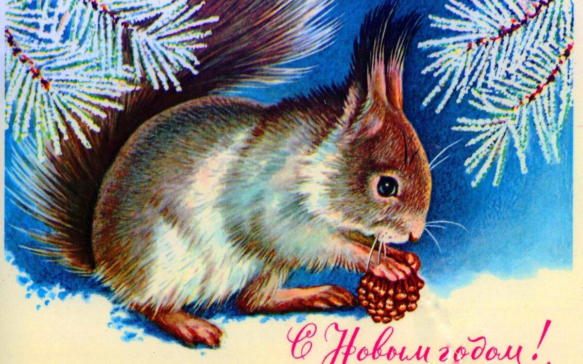 Мужчине февраля, новогодние открытки белка