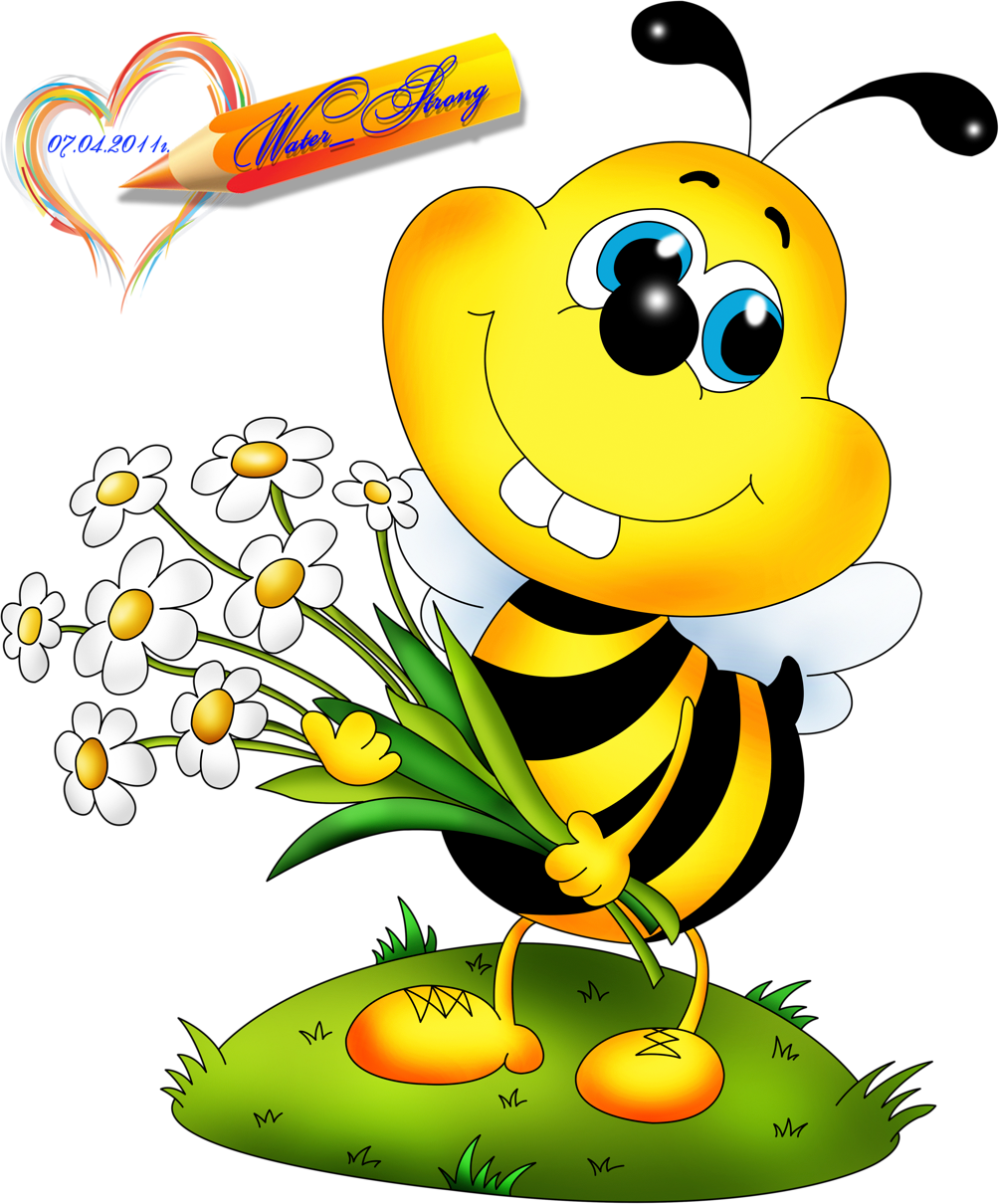 картинки пчелка проснулась знают только
