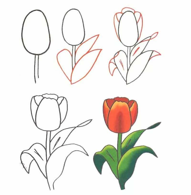 Открытка 8 марта рисовать по шагам