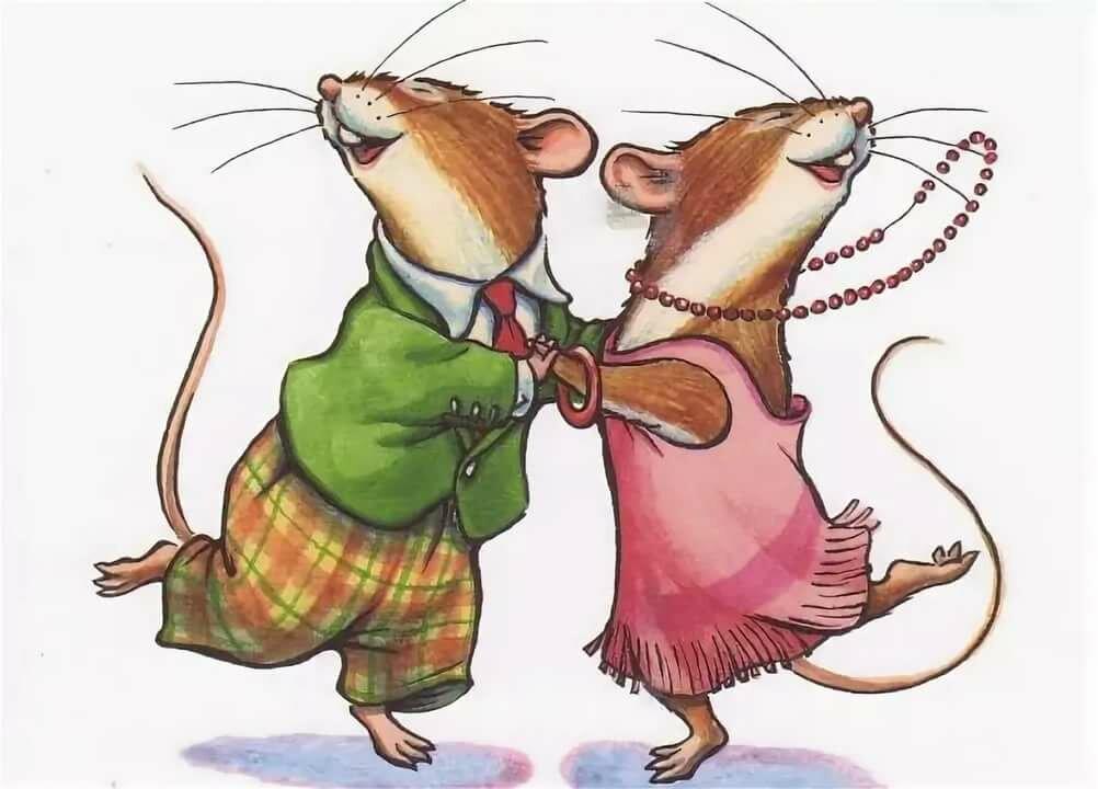 открытки кошка и крыса днем рождения