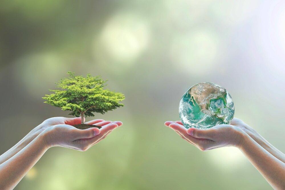Картинки о защите природы экологии