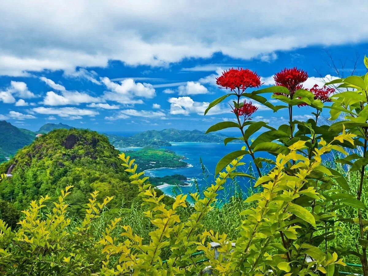Сделать открытку, красивые открытки с видом природы