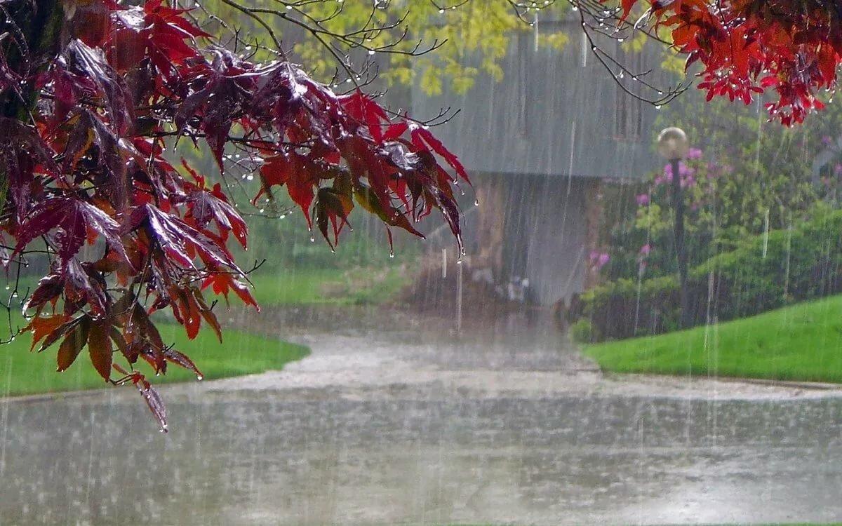 Надписью будешь, осень дождь фото красивые