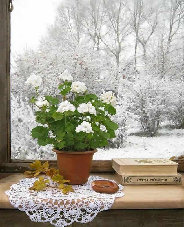 картинки доброе утро снег в апреле инстаграма часто блокирует