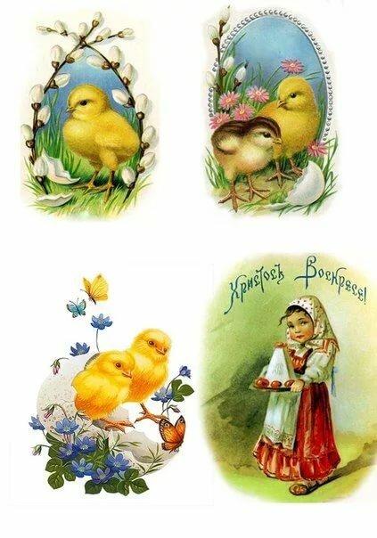 Картинки для декупажа птицы виноград работает